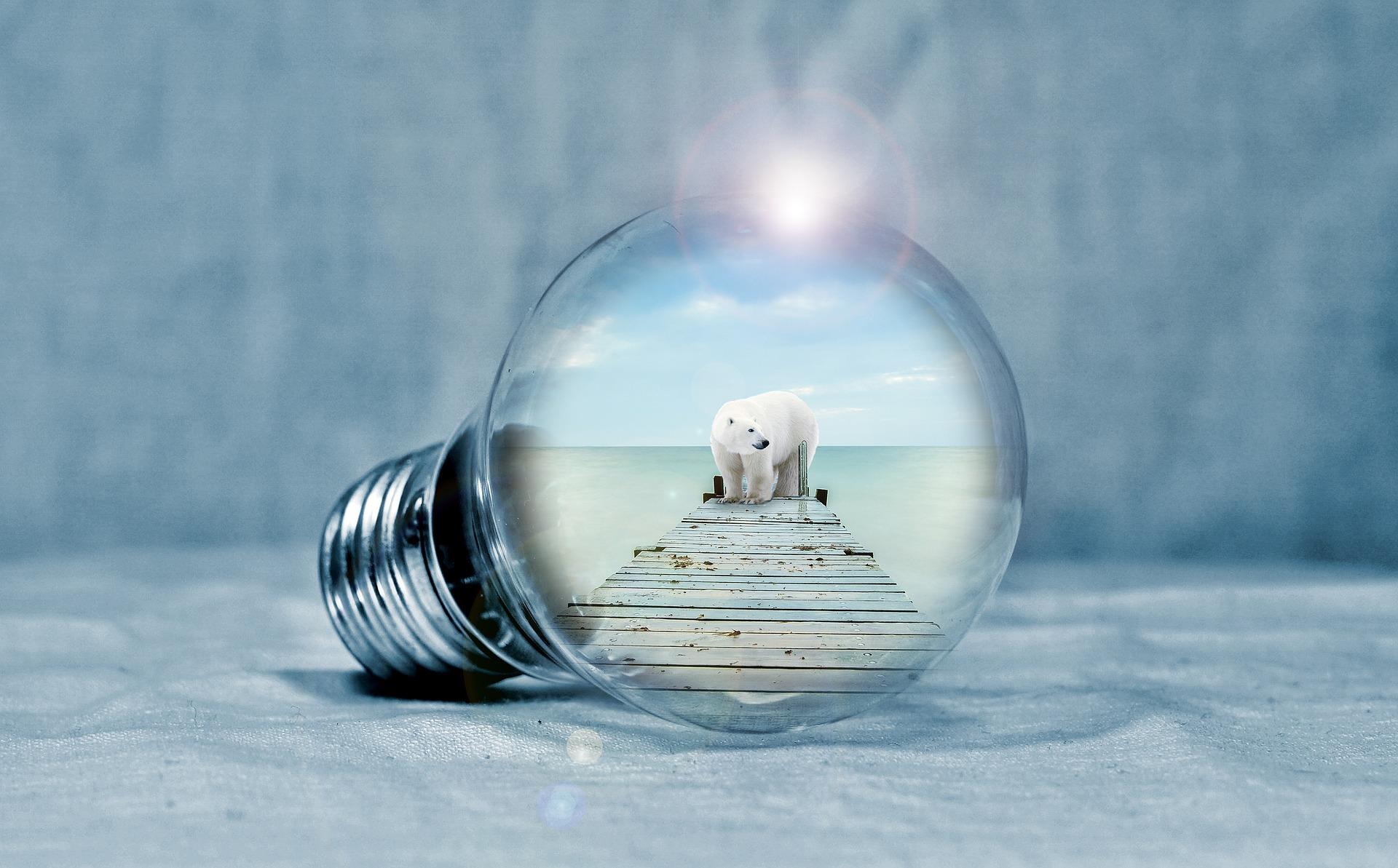 Liberalisierung des Strommarktes